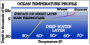 """Riassunto grafico dei """"tre strati"""" del mare - Immagine presa dalle slide del prof. Cassardo di Fisica del Clima"""