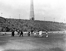 Soccer - League Division One - Chelsea v Everton - Stamford Bridge