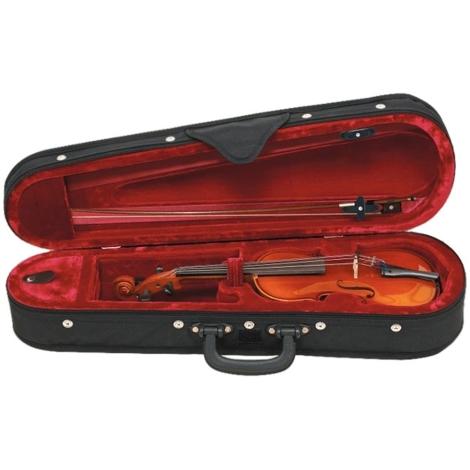 custodia violino
